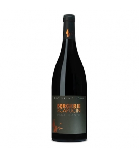 Dame Jeanne rouge 2019 - Bouteille 75 cl
