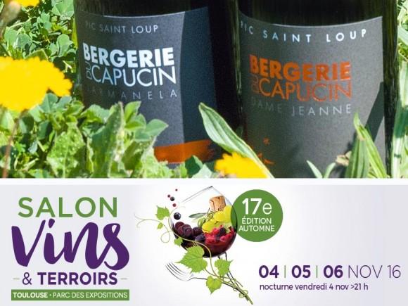 Salon Vins & Terroir à Toulouse du 4 au 6 novembre 2016